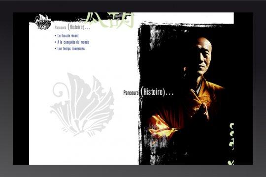 cd-rom Ginko-biloba