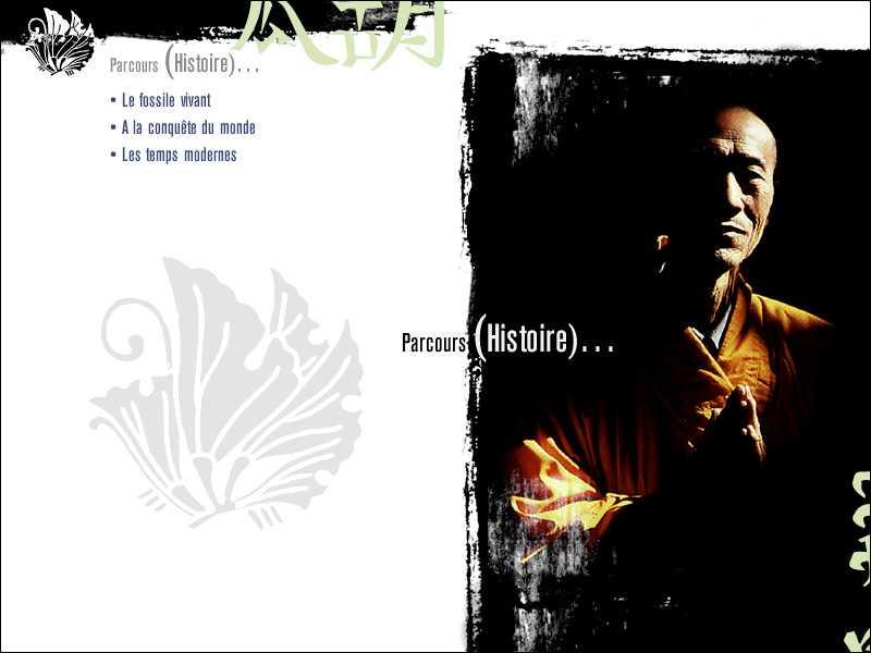CD-Rom sur le Ginkgo Biloba